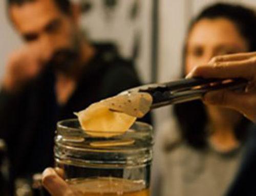 Taller Kombucha, 1ª fermentación